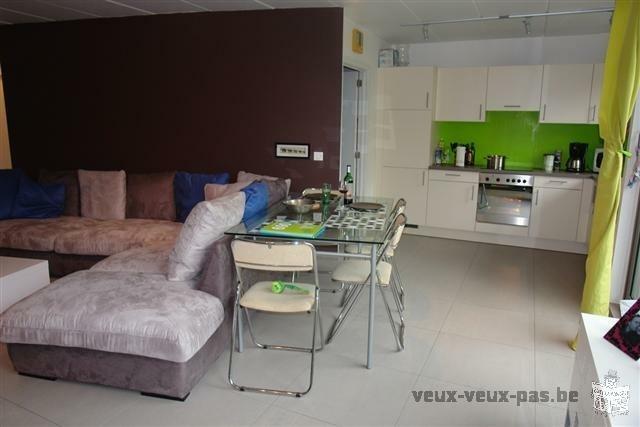 Appartement 2 chambres en plein coeur du centre ville