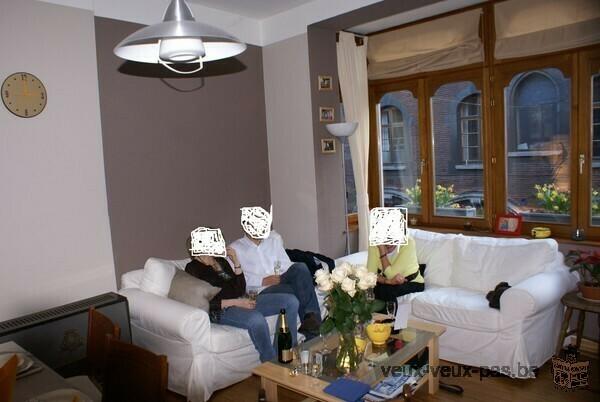 Bel appartement 2 chambre rénové 70 m²