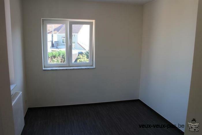 Bel appartement duplex 1 chambre de 60m²