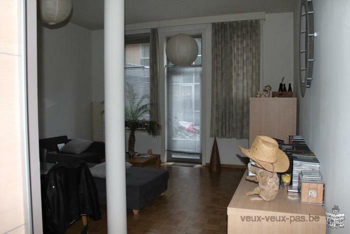 Charmant appartement 1 chambre de 64 m²