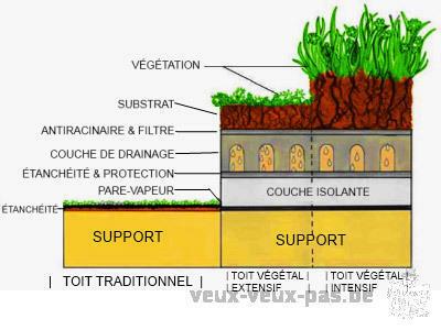 L'ART-BORETUM : abattage/elagage/espaces vert/toiture végétal /terrassement,pavage