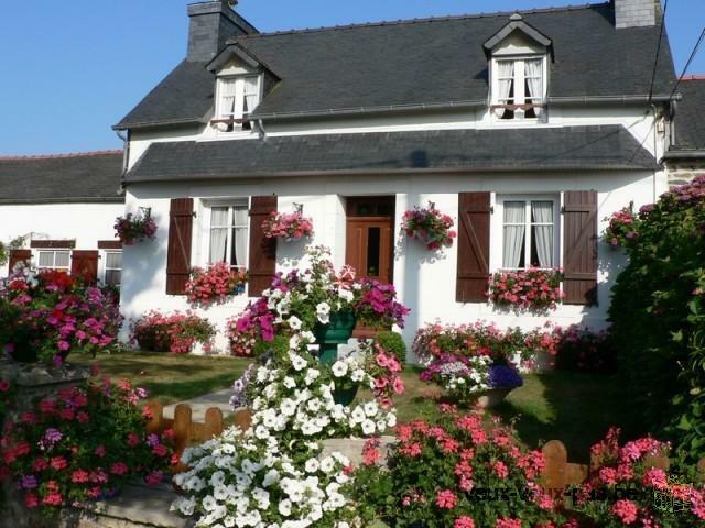 Location de vacances le Grand Hortensias ¨Pleyben centre Finistère France