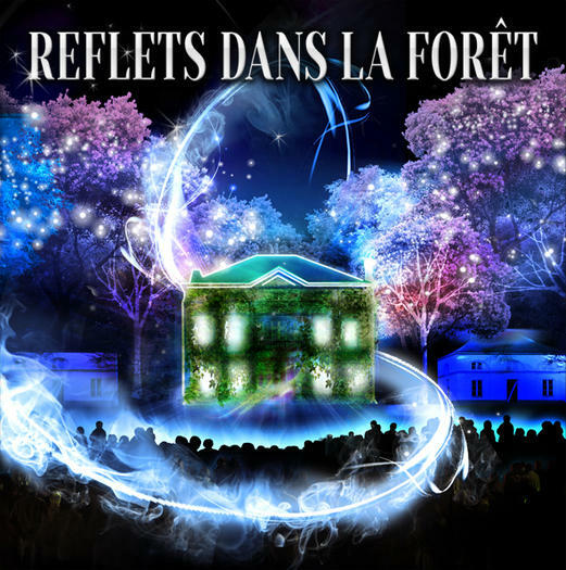 Reflets dans la Forêt