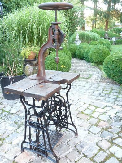 chignole très ancienne sur pied peut servir de décoration ou l'usage en état de fonctionnement