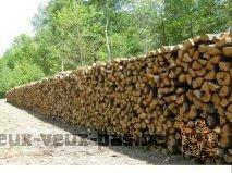 promotion de bois de chauffage (livraison gratuite)